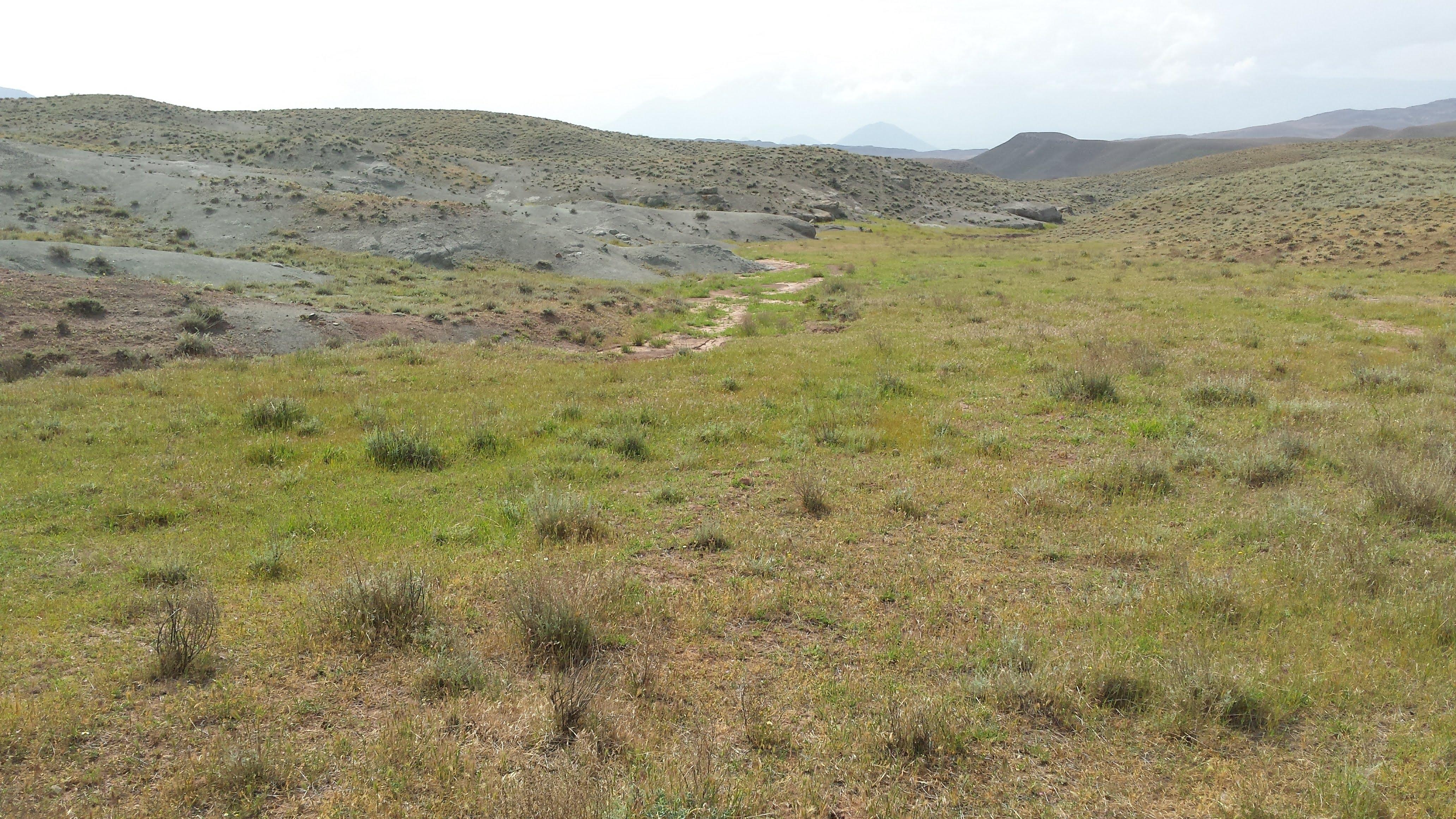 Nakchivan