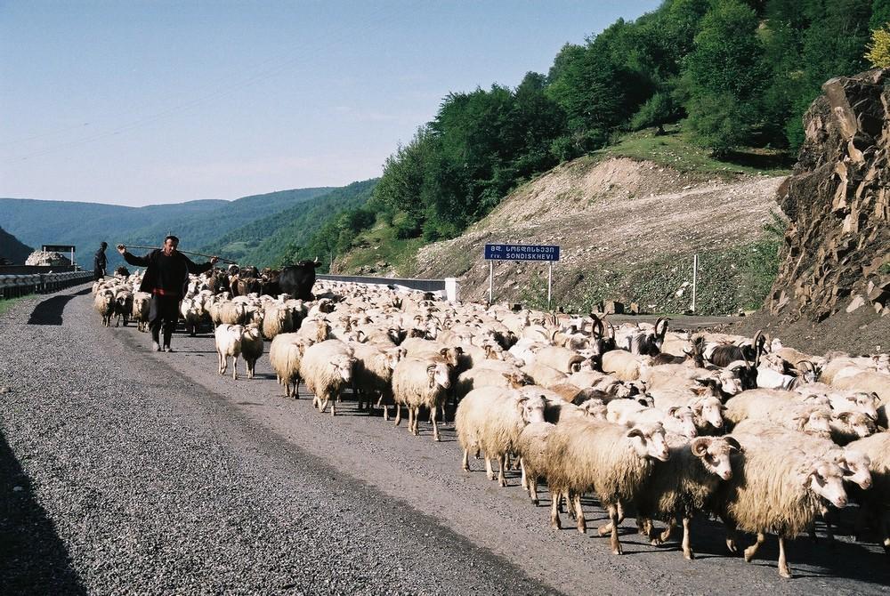 Op weg naar Kazbegi in het noorden