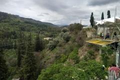 Botanische tuinen Tbilisi