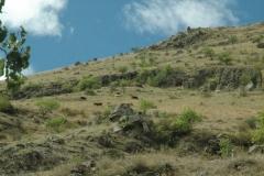Ruige berghellingen in het zuiden
