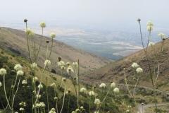 Armenië (foto C. Snik)