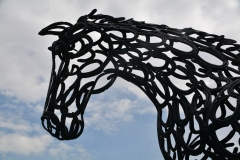 Hoefijzerpaard door Tom Hill, Armenië  (foto B. Wouda)